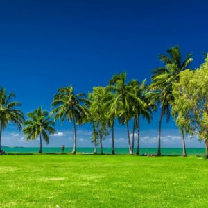 What To do in Port Douglas