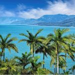 Port Douglas: The 5 Best Beaches in Queensland's Paradise