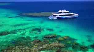 Port Douglas snorkeling