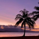 Fall in love with Port Douglas and the Great Barrier Reef!