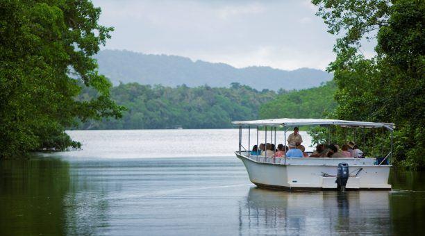 Daintree River Cruise